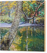 The Old Swimming Hole Wood Print