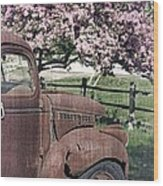 The Old Truck And The Crab Apple Wood Print