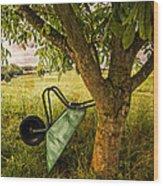 The Old Wheelbarrow Wood Print