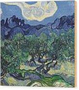 The Olive Trees Wood Print