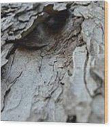 The Oracle Wood Print