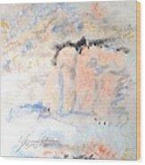 The Orange Bluffs Wood Print