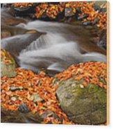 The Orange Stream Wood Print