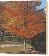 The Orange Tree Wood Print