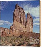 The Organ, Arches National Park, Utah Wood Print