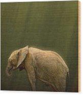 The Orphin Wood Print