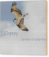 The Osprey Wood Print