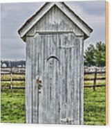 The Outhouse - 2 Wood Print