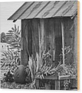 The Outhouse Bw Wood Print