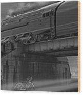 The Overpass 2 Panoramic Wood Print