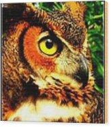 The Owl's Eye Wood Print