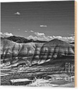 The Painted Hills Bw Wood Print