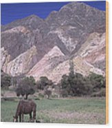 The Painters Palette Jujuy Argentina Wood Print