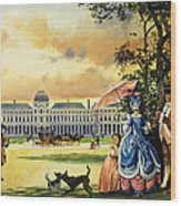 The Palace Of The Tuileries Wood Print by Andrew Howat