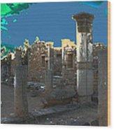 The Palaestra -temple Of Apollo Wood Print