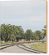The Palms By The Tracks Wood Print