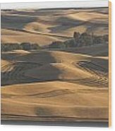 Harvest Hills Wood Print by Latah Trail Foundation