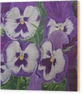 The Pansy Brothers Wood Print