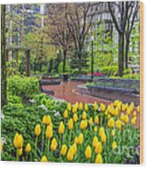 The Park At Post Office Square Wood Print