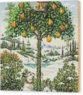 The Partridge In A Pear Tree Wood Print