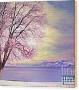 The Pastel Dreams Of Winter Wood Print