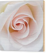 The Pastel Rose Wood Print