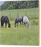 The Pasture Wood Print