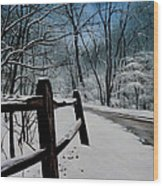 The Path Ahead Wood Print