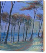 The Path At Lands End Wood Print
