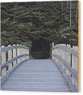 The Path The Lies Ahead Wood Print