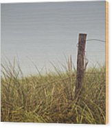 The Path To The Beach Wood Print