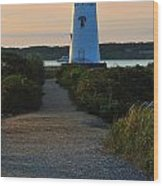 The Path To The Lighthouse Wood Print