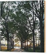 The Path To The Titanic Memorial Wood Print