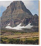 The Peak At Logans Pass Wood Print