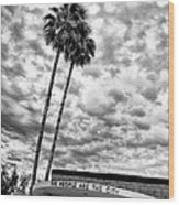 The People Are The City Palm Springs City Hall Wood Print