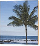The Perfect Palm Tree - Sunset Beach Oahu Hawaii Wood Print