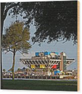 The Pier - St. Petersburg Fl Wood Print