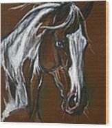 The Pinto Horse Wood Print