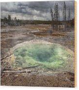 The Pit Wood Print by Stuart Deacon