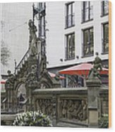 The Pixie Fountain Cologne Germany Wood Print