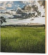 The Plains Of Africa Wood Print