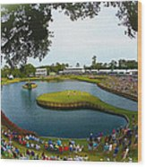 The Players Championship 2014 Wood Print