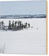 The Point In Winter Pinheys Point Ontario Wood Print by Rob Huntley