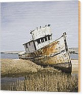 The Point Reyes Wood Print