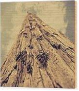 The Pole Wood Print