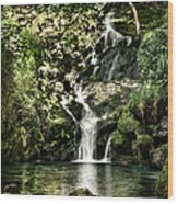 The Pond And The Forest Waterfall Wood Print