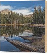 The Pond At Dana Meadow Wood Print