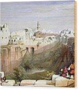 The Pool  Of Bethesda Jerusalem Wood Print