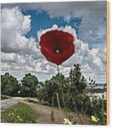 The Poppies Show You The Way Wood Print