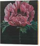 The Poppy Wood Print